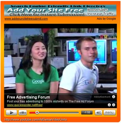 AdSense Video Units
