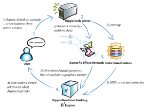 Diagram of how the Rippol system works