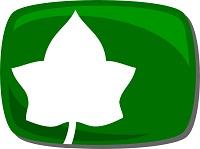 ivi TV Logo
