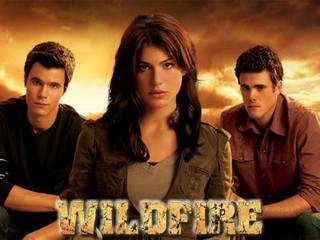 Wildfire-logo
