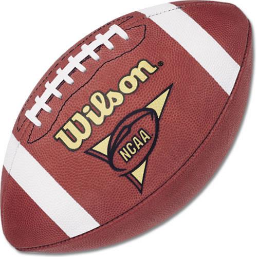 http://www.webtvwire.com/wp-content/uploads/2007/08/wilson-leather-official-ncaa-football.jpg